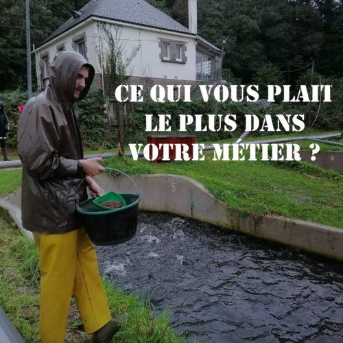 Truite arc en ciel _ pisciculture Bourdoux - Bretagne Truite (25) 2